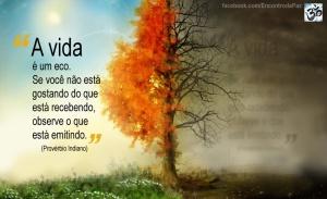 vida_eco