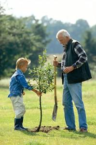 pai-trabalho-casa-homens-vida-campo-43720